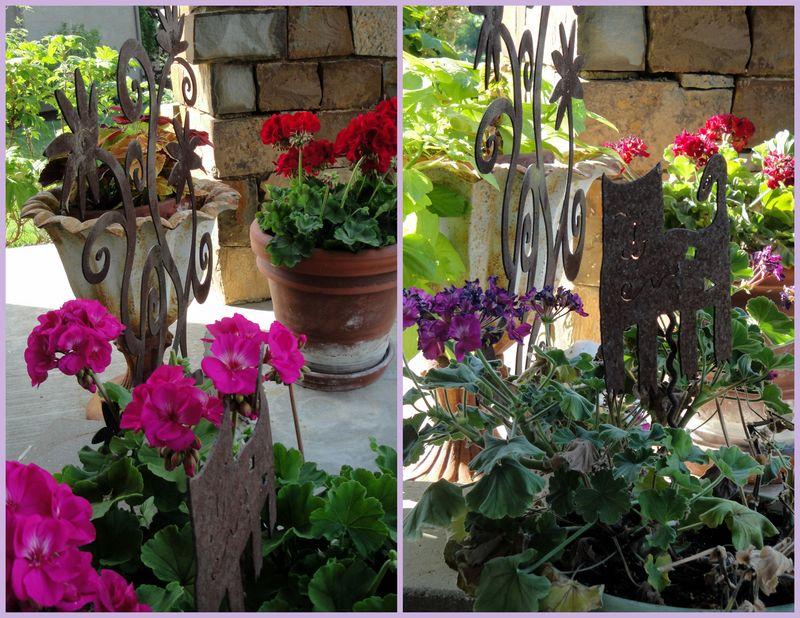 Garden 20111