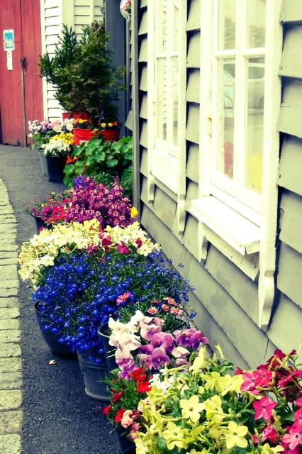 image from http://talltalesfromkansas.typepad.com/.a/6a01538dee917a970b017615f92489970c-pi