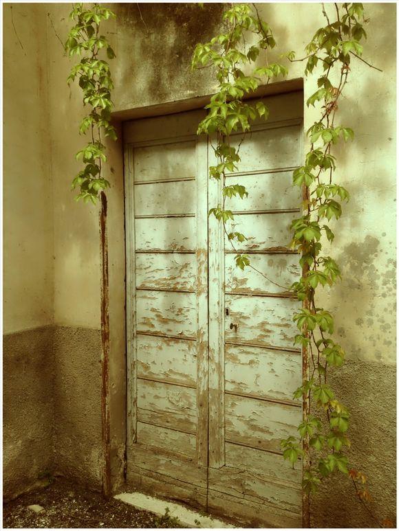image from http://talltalesfromkansas.typepad.com/.a/6a01538dee917a970b017eeaf1c675970d-pi